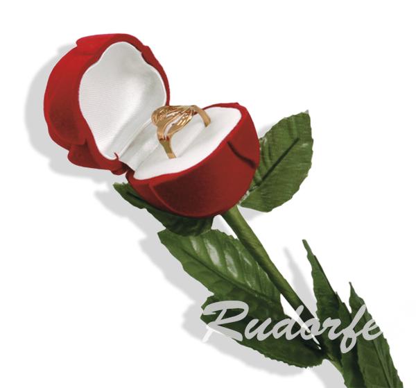Trandafir mare pe ROSU