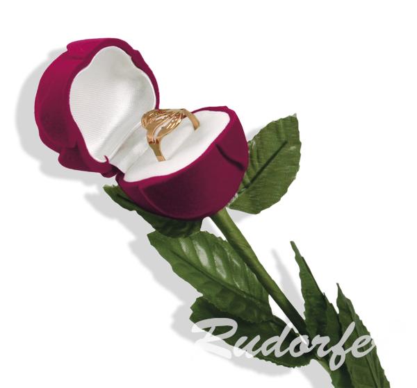 Trandafir mare pe VISINIU